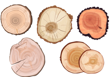 Tree Ring Vectors - vector gratuit #334859