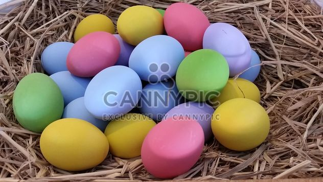 Colorful eggs - Free image #335189