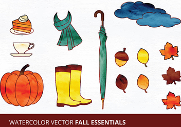 Fall Essentials Vector Illustrations - Free vector #335469
