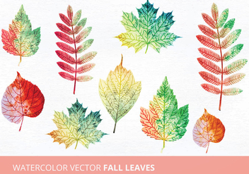 Watercolor Vector Leaves - vector gratuit #335479