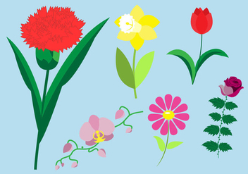 Set of Flower Species - vector gratuit #336629