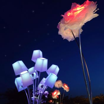Lanterns in shape of flowers - бесплатный image #337919