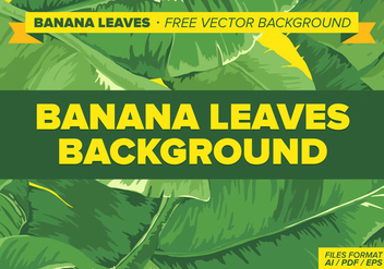 Banana Leaves Free Vector Background - vector gratuit #338379