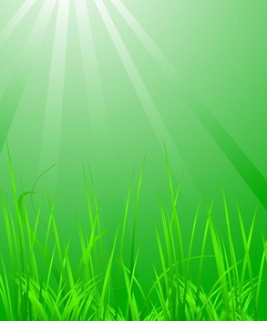 Grass with light - vector gratuit #338889