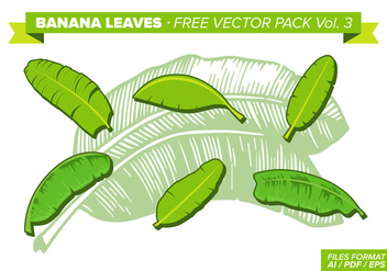 Banana Leaves Free Vector Pack Vol. 3 - Free vector #341579