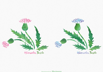 Free Thistle Watercolor Vector - Free vector #342959