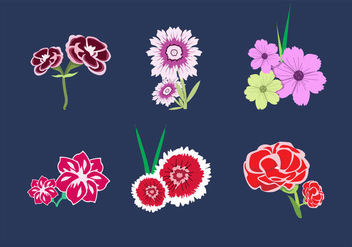 Carnation Bouquet Vectors - Free vector #343349
