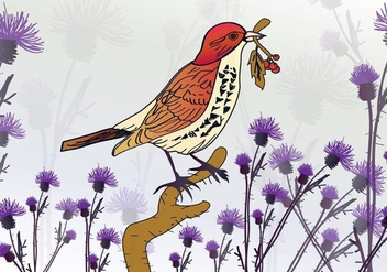Bird on Thistle - Free vector #343709