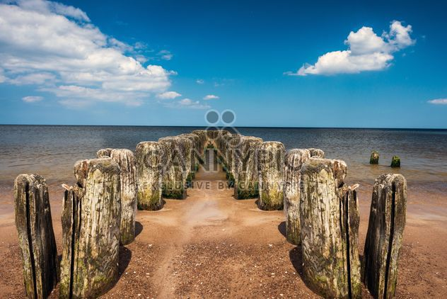 wooden piles in water - Free image #344009