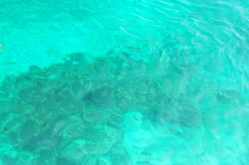 Sea water of Nangyuan lsland in thailand - image #344059 gratis