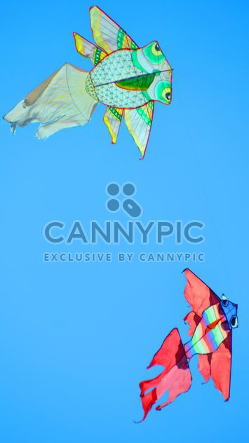 kites in the blue sky - Free image #344209