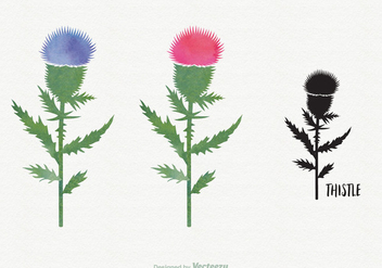 Free Watercolor Thistle Vector - vector gratuit #344469