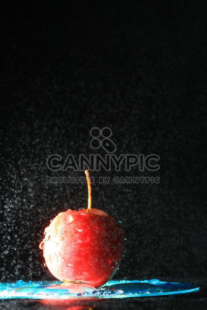 Red apple in water splash on black background - image gratuit #344559