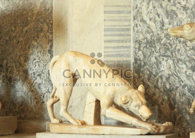 Sculpture of dog in museum, Vatican, Italy - Free image #346179