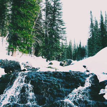 Winter landscape with waterfall in forest - Free image #347009