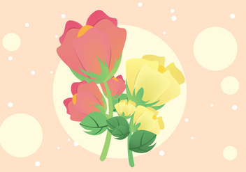 Free Cotton Plant Flower Illustration Vector - Kostenloses vector #348769
