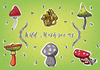 Free Different Types of Mushrooms Vector Background Collection - Free vector #348959