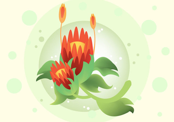 Free Protea Vector Illustration - Kostenloses vector #350099