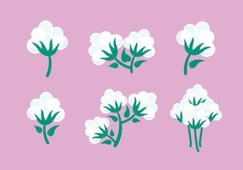 Cotton Plant Vector - vector gratuit #352949