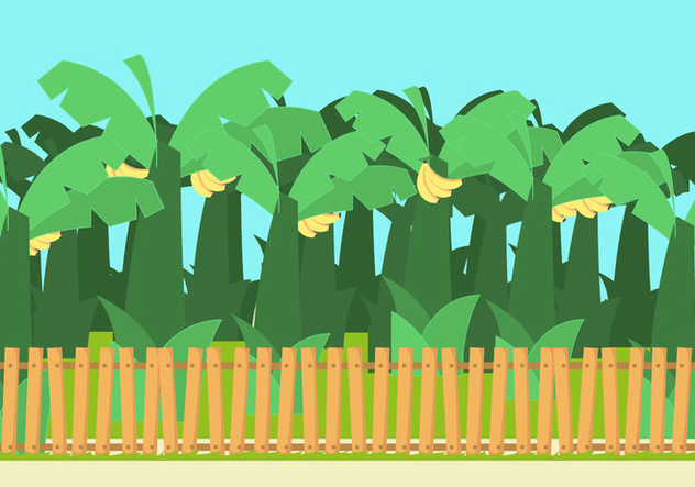 Banana Trees Vector - Free vector #355169