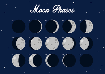 Vector Moon Phase - Free vector #357649