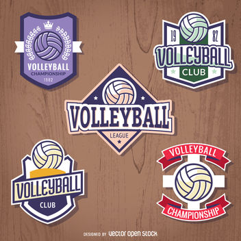 Set of volleyball badges - vector gratuit #363439