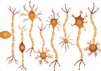 Neuron Set - vector #369719 gratis
