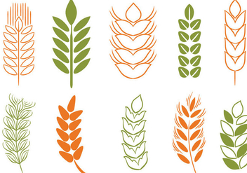 Free Wheat Stalk 2 Vectors - бесплатный vector #371549