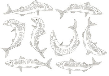 Mackerel icons - vector #373589 gratis