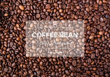 Coffee Bean Background Texture - vector gratuit #374229