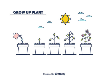 Plant Growth Cycle Vector - Free vector #375549