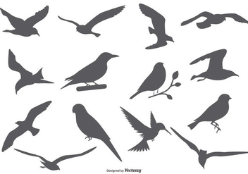Bird Vector Silhouettes - Free vector #375919