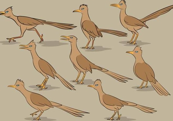 Roadrunner Bird Cartoon Vectors - vector #377579 gratis