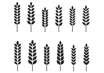 Free Wheat Vector - vector gratuit #377639