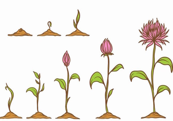 Grow Up Plant Set - vector #380599 gratis