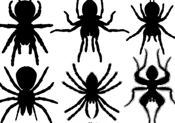 Vector Set Of Tarantula Icons - Kostenloses vector #381819
