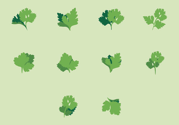 Cilantro Icon Set - vector gratuit #383479