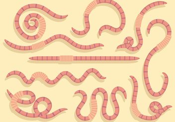 Free Earthworm Icons Vector - бесплатный vector #383869