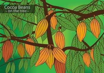 Cocoa Beans on the Tree Vector - бесплатный vector #384449