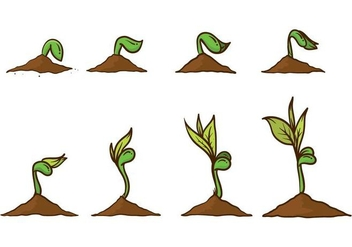 Free Grow Up Plant Vector - Kostenloses vector #385259
