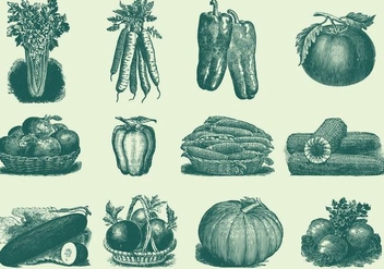 Vintage Vegetables - vector #389789 gratis