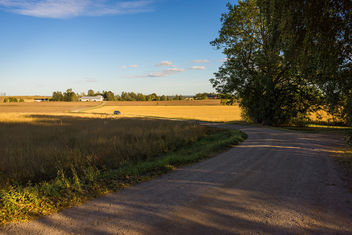 Country road - image gratuit #389849