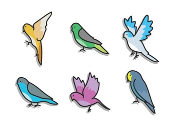 Budgie Vector - Free vector #391409