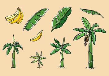 Banana Tree Hand Drawn Vector - Kostenloses vector #393459