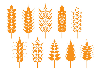 Oat and Wheat Stalk Icons - vector gratuit #394449