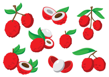 Free Lychee Vector - Free vector #396179