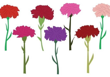 Carnation Vector - Free vector #397259