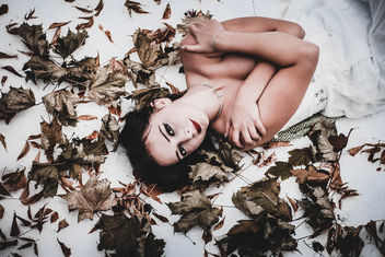 Girl in maple leaves - image gratuit #397579