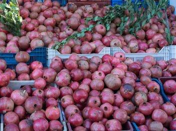 Turkey_randPomegranateom (1 of 30) - Free image #397729
