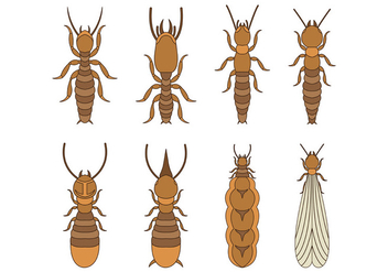 Termite Vector Icons - Free vector #399369